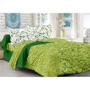 Valtellina 100% Cotton Double Bedsheet with 2 Pillow Cover-216-d