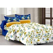 Valtellina 100% Cotton Double Bedsheet with 2 Pillow Cover-217-D