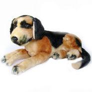 German Shepherd Pup 16 inches