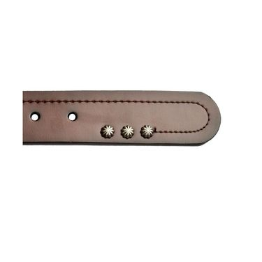 Swiss Design Leatherite Casual Belt For Men_Sd118br - Brown