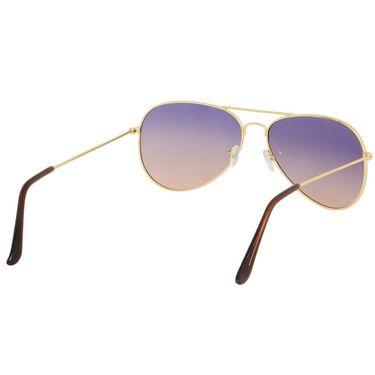 Alee Aviator Metal Unisex Sunglasses_Rs0205 - Blue