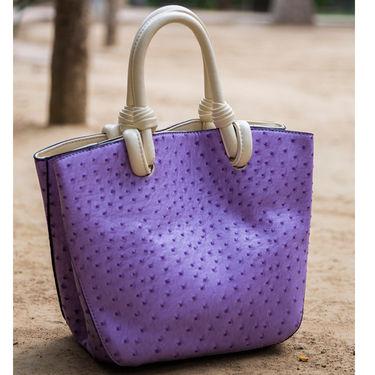 Arisha Women Handbag Purple -Lb231