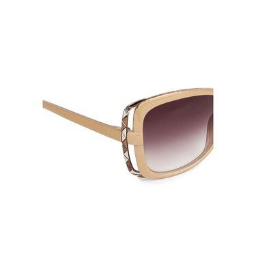 Pede Milan Wayfarer Sunglasses_Pm142 - Maroon