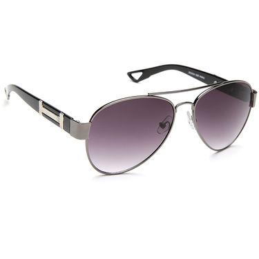 Alee Metal Oval Unisex Sunglasses_139 - Purple