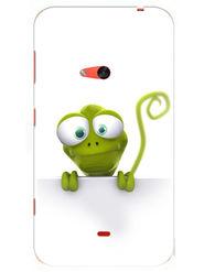 Snooky Designer Print Hard Back Case Cover For Nokia Lumia 625 - Green